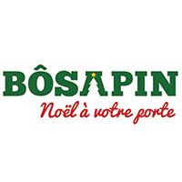 Bôsapin Arbre De Noël Livraison À Domicile - Promotions & Rabais pour Articles Ménagers