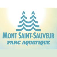 Mont Saint-Sauveur Parc Aquatique - Promotions & Rabais pour Escalade