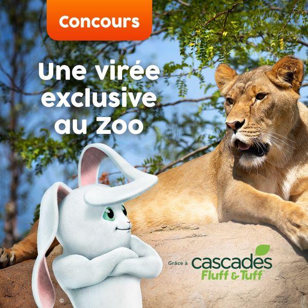 Concours Une Virée Exclusive Au Zoo Grâce à Cascades Fluff & Tuff!