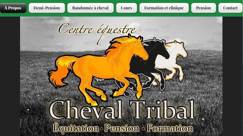 Centre équestre Cheval Tribal En Ligne