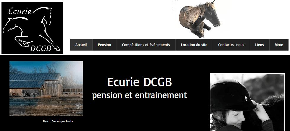 écurie Dcgb En Ligne